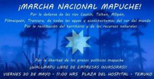 marcha-nacional-mapuche