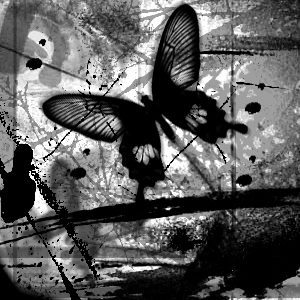 black_and_white_butterfly_by_m3ntalysan3