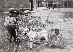 in_sunny_tennessee._tennessee_united_states._1903