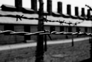 auschwitz-barbed-wire-black-and-white-favim-com-219655