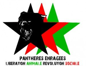 pantheres-enrages_logo-e1380813761547