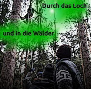 waldwoche-300x295